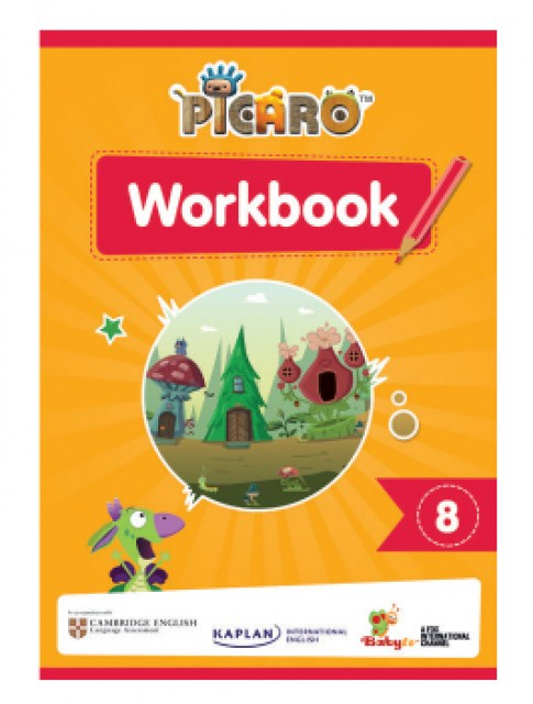 Picaro-work-books-_8